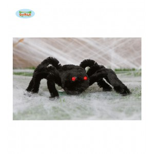 Velký pavouk s rudýma očima